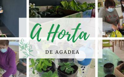 A horta de Agadea: estimulación e diversión